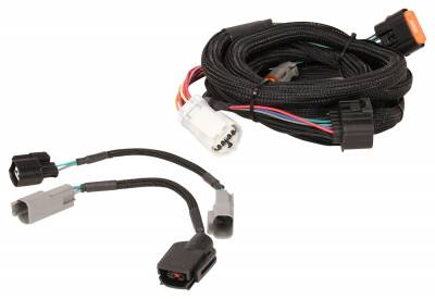 Automatic Transmission Components - Automatic Transmission Wiring Harness - MSD - Harness, Ford (4R70W/75W) 98-Up - 2772